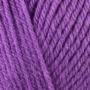 488-Violet
