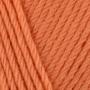 495-Apricot